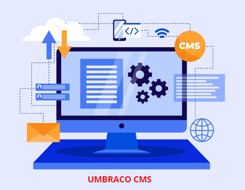 Umbraco platform, expert Umbraco developers, Umbraco CMS Development Services, Umbraco development company, Umbraco development services, custom Umbraco solutions